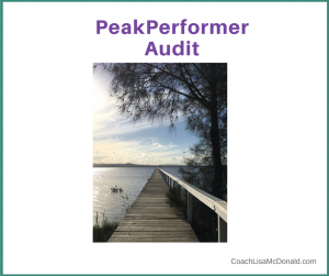 PeakPerformer Audit Program