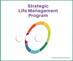Strategic Life Management Program